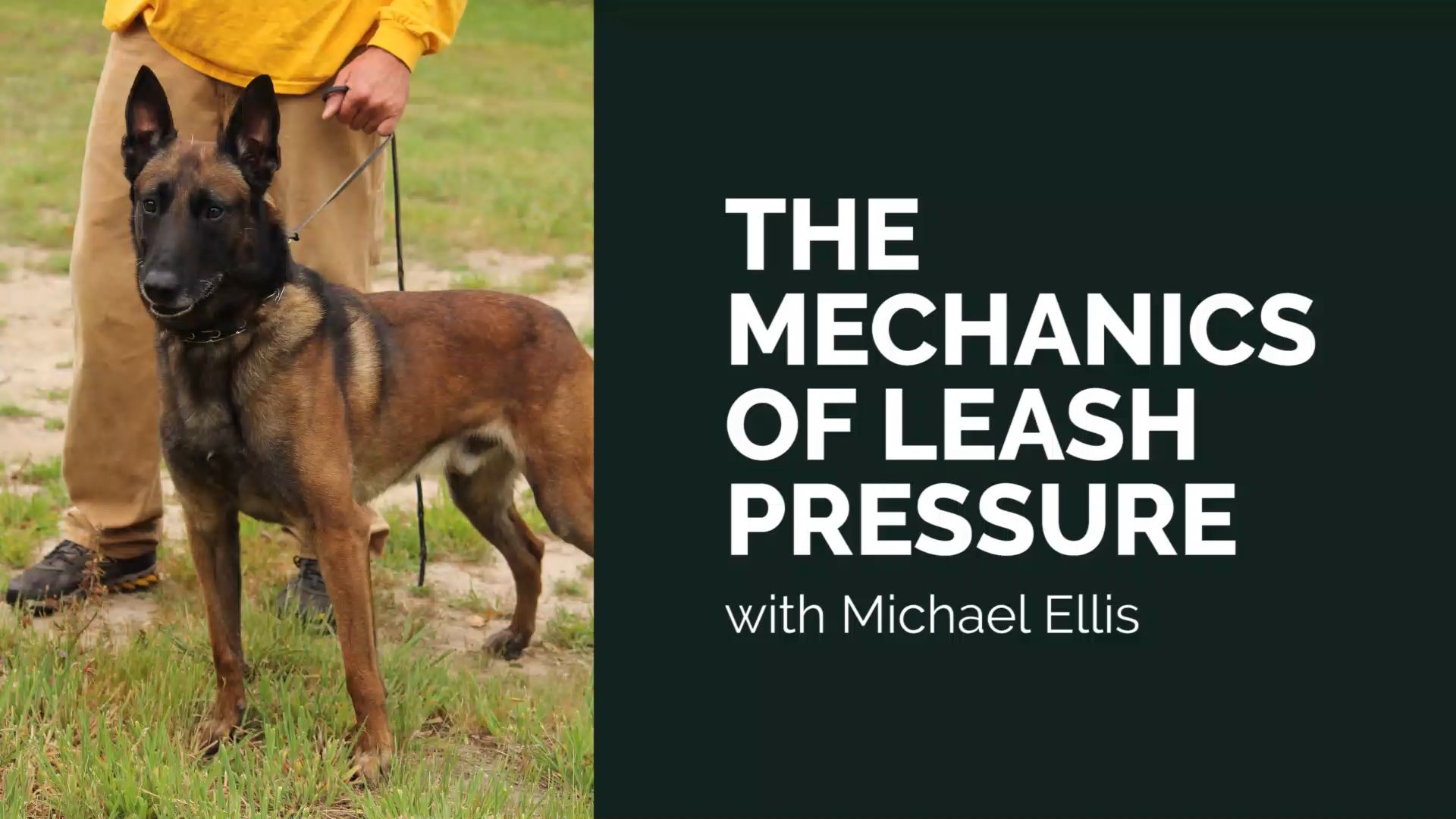 In This Video Michael Ellis Shows You How To Properly Hold A