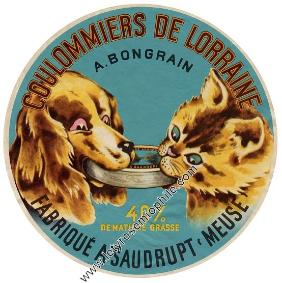 Coulommiers De Lorraine French Cheese Label Cats In