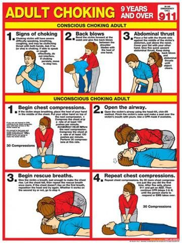 Adult Choking First Aid Wall Chart Poster (2013 ARC Guidelines)- Fitnus Corp #firstaid