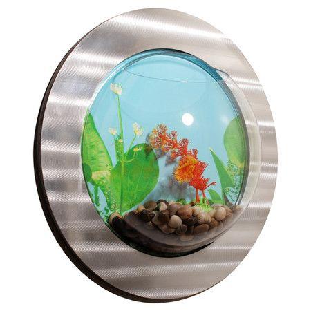 Bulle Fish Bowl