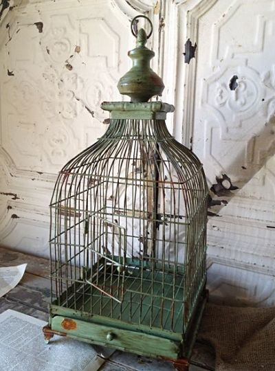 Petite French Bird Cage BIRDCAGES Pinterest Bird cages and Bird