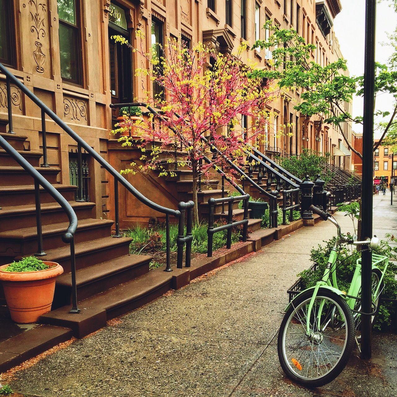 Today in Brooklyn… Carroll Gardens, Brooklyn, New York City ...