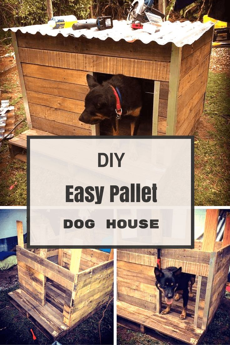 Diy Easy Pallet Dog House Easy Dog House Pallet Dog House Diy