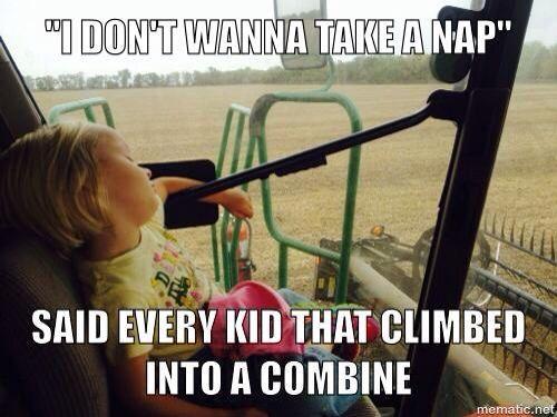 Farmer Memes Google Sogning