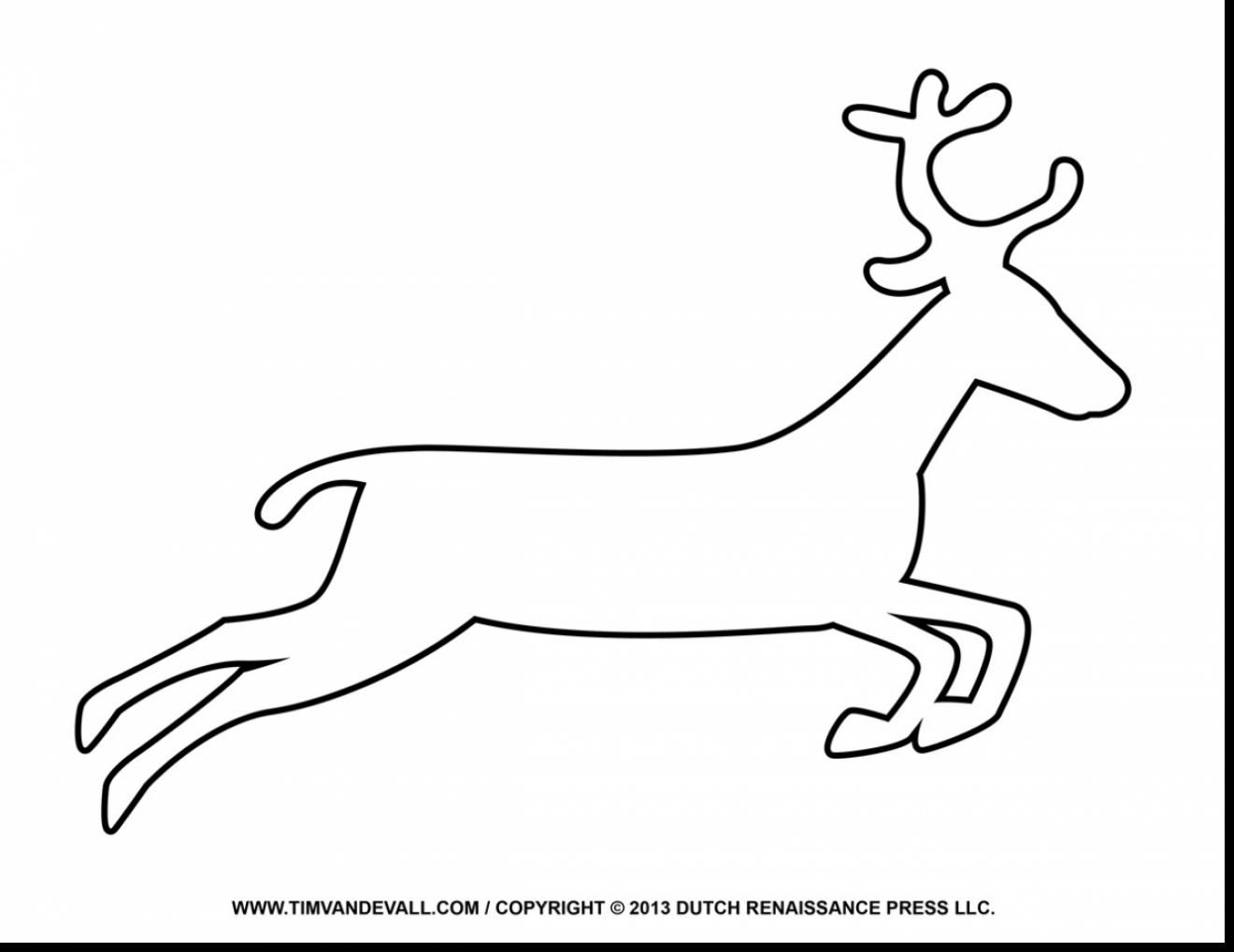 beautiful reindeer coloring page template with reindeer coloring ...