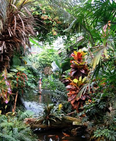Victoria Butterfly Gardens in Brentwood Bay, BC, Canada ...
