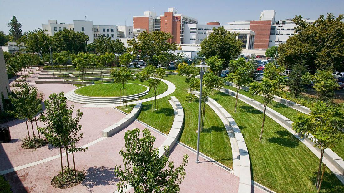 SWA UC San Francisco Medical Center Landscape