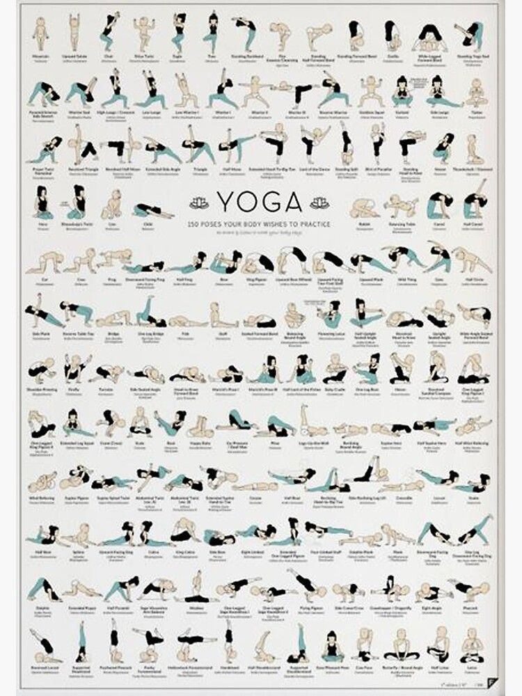 Food on Twitter Yoga poster - 150 Poses Poster by
