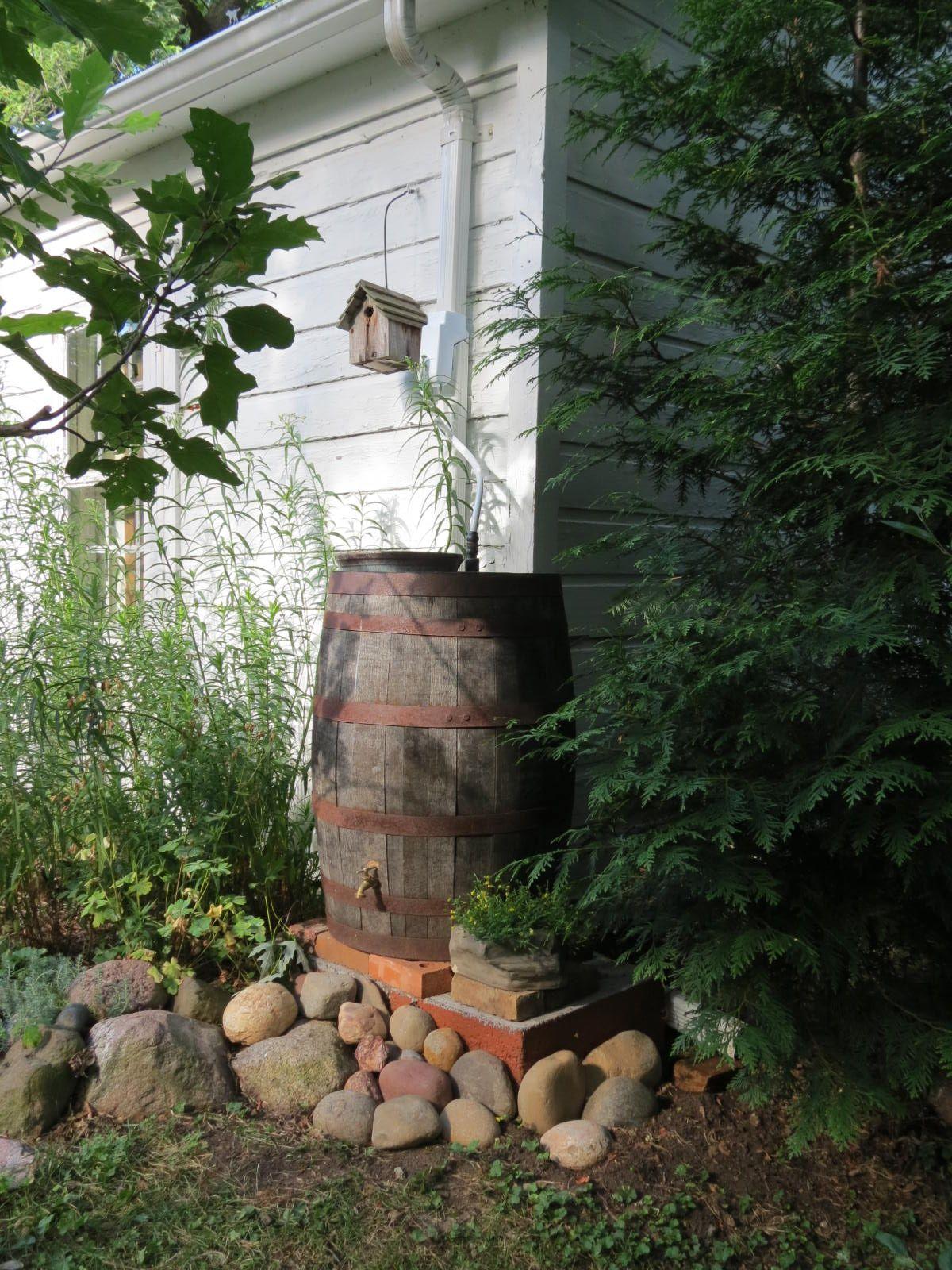 I like the stones built up around the rain barrel