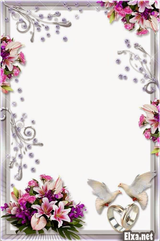 png frame wedding frame png flower frame png romantic ...