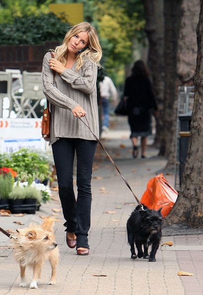 Sienna Miller takes her dogs out for a walk with her mother Jo.