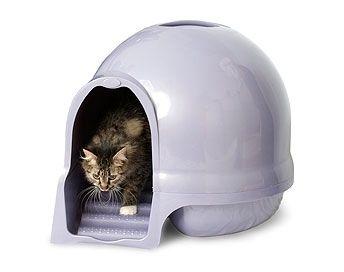 Petmate Cleanstep Litter Box Litter Box Cat Box Cat Pet Supplies