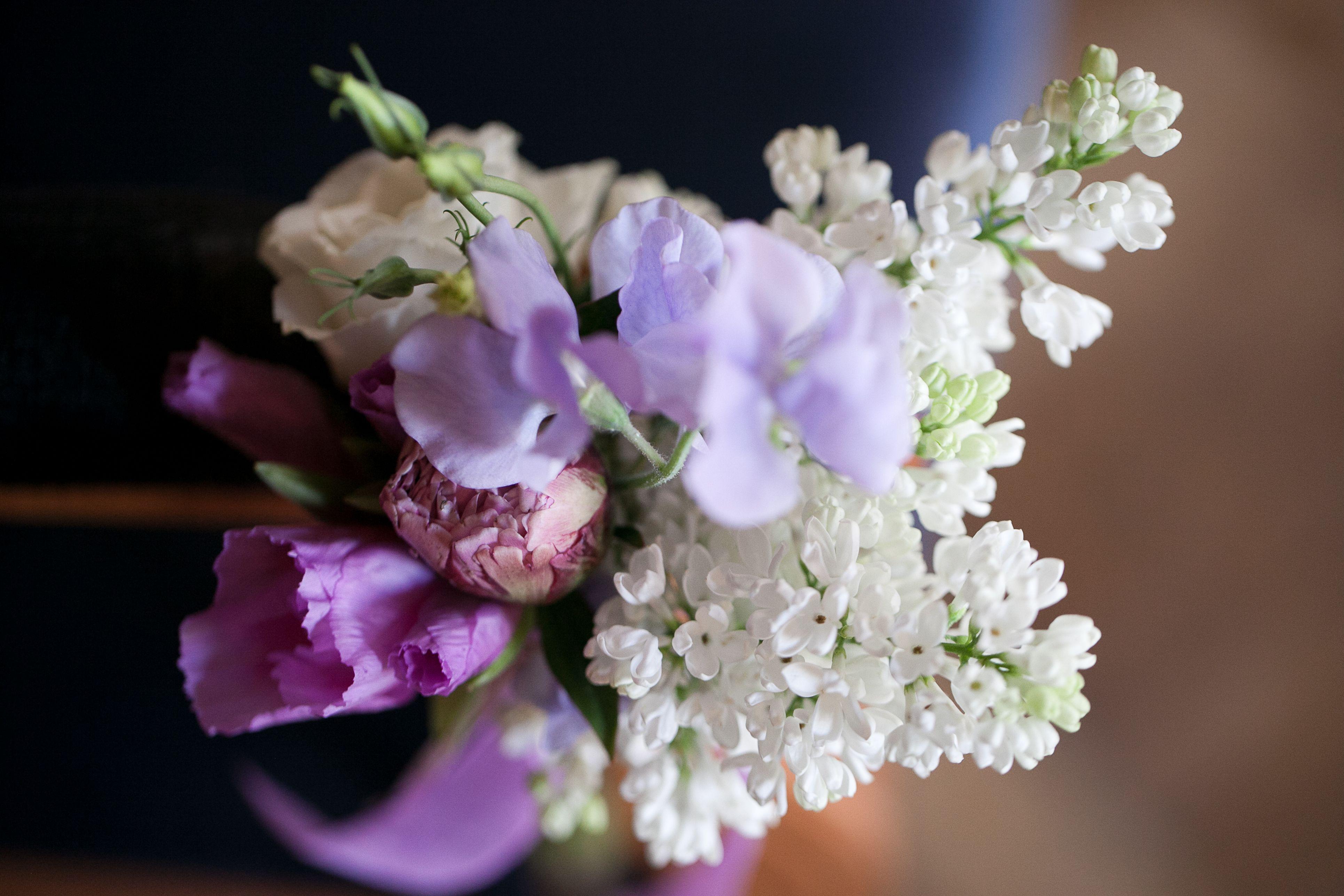 April flowers in mauve  lilac