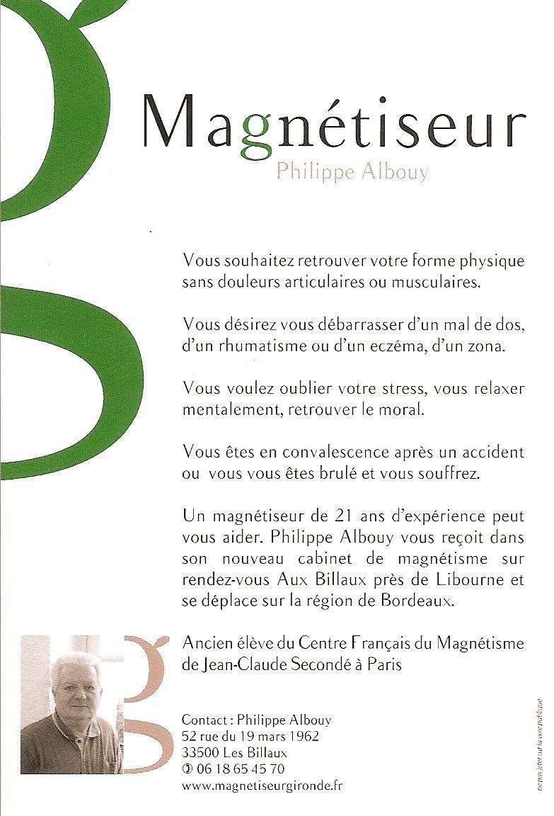 flyer pour mon activit de magn tiseur le magn tisme. Black Bedroom Furniture Sets. Home Design Ideas