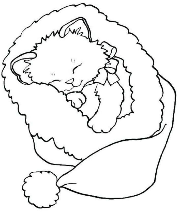 Süße Kätzchen Malvorlagen