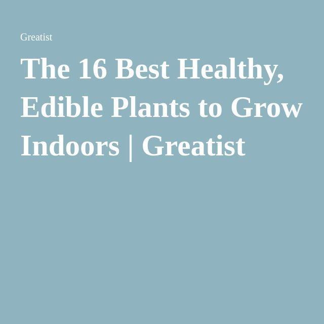 15 Edible Plants To Grow Indoors Growing Plants Indoors 640 x 480