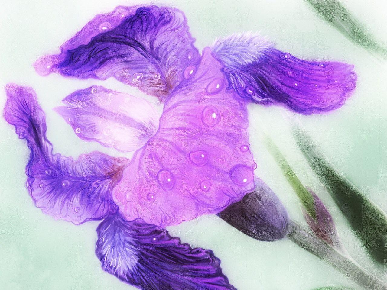 картинки с фиолетовыми рисунками возрождение руси, возобновление