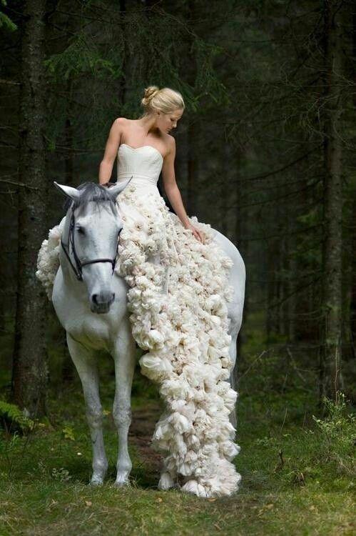 Horse back bride