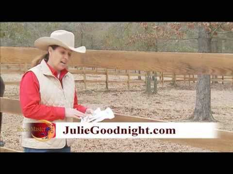 How to Use Fly Predators #fly predators #juliegoodnight #howtouse