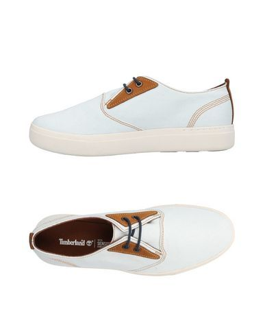 66272ddf Timberland Women Sneakers on YOOX. The best online selection of Sneakers  Timberland. YOOX exclusive