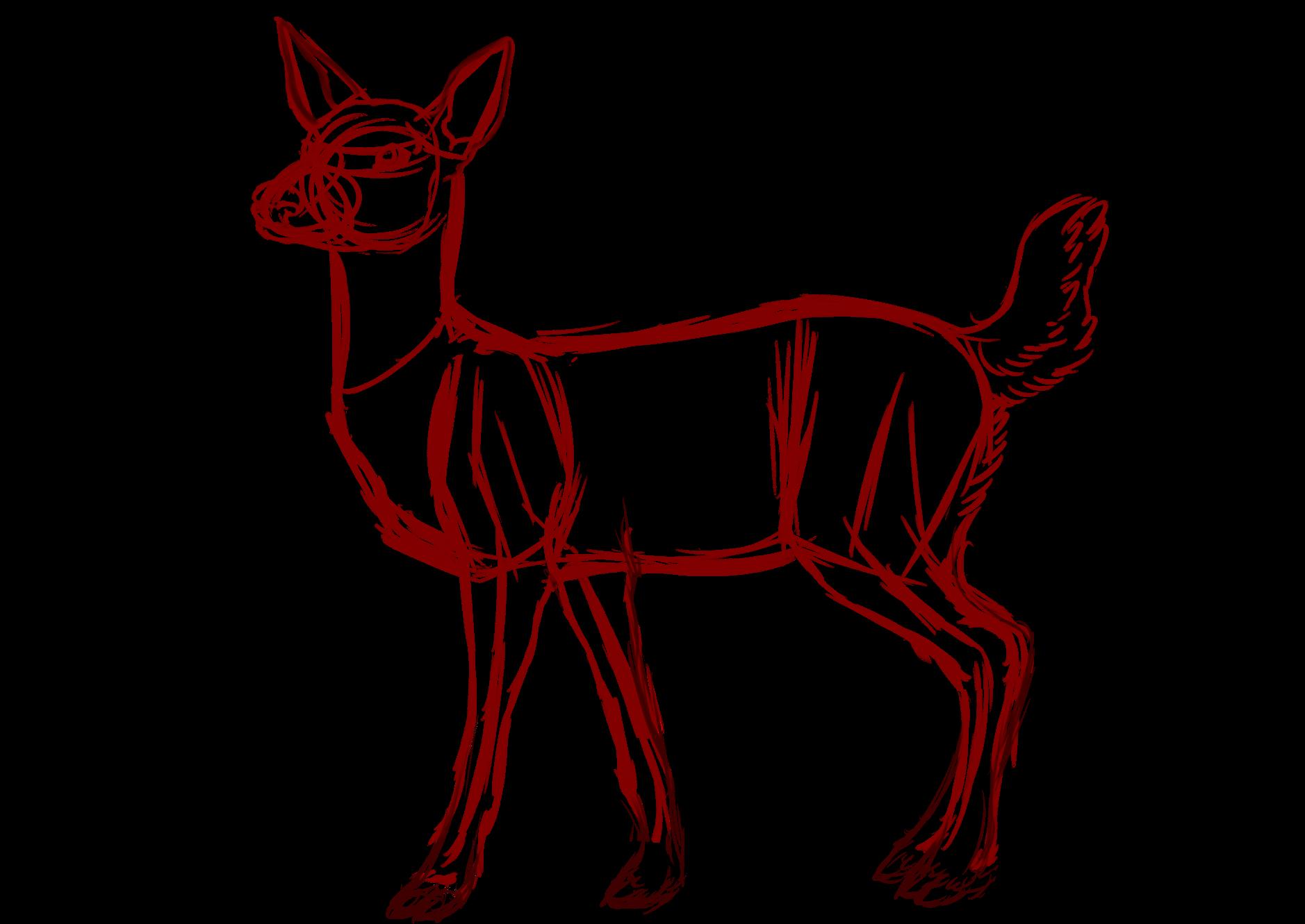 deer drawing   Animal Anatomy   Pinterest   Deer drawing, Animal ...