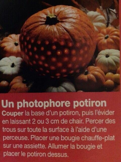 Photophore potiron