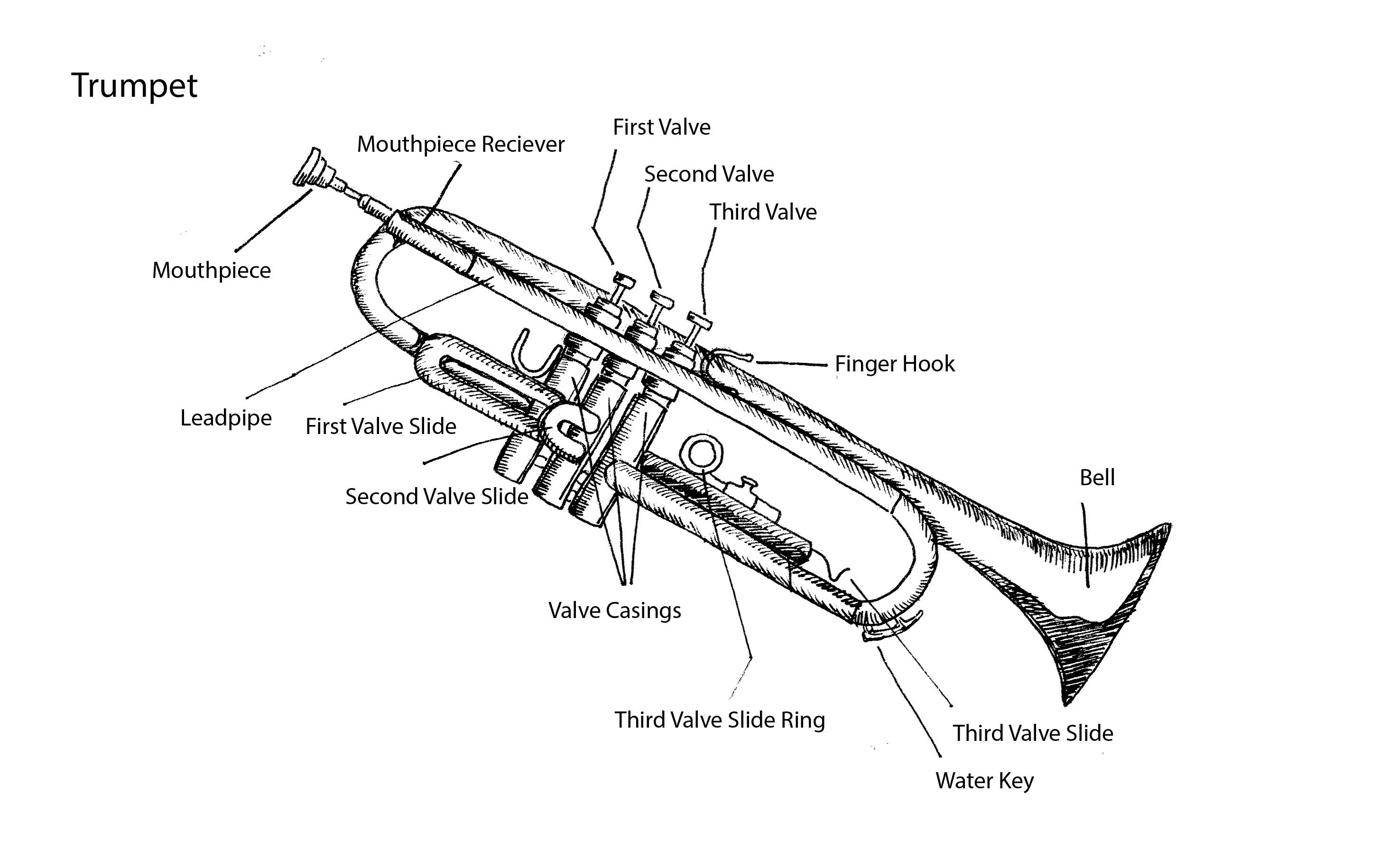 Parts Of Trumpet By Tracie Noles Ross Music Education Metropolitan Orchestra
