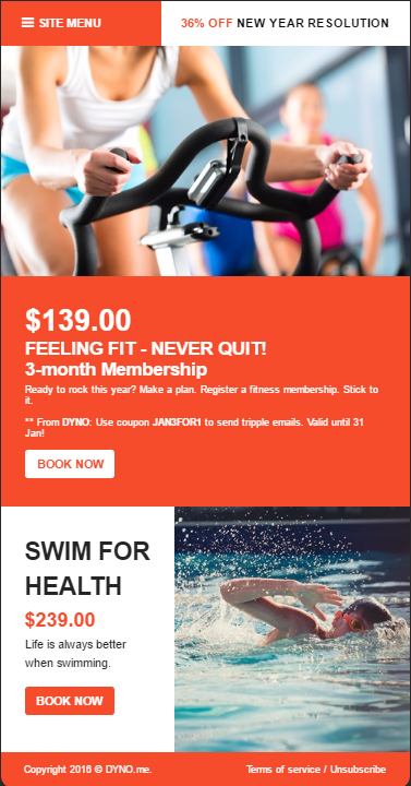 fitness newsletter templates thevillas co
