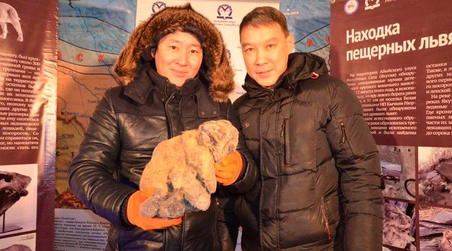 Cool for cats: Ancient frozen lion cubs found in Siberian glacier may be cloned (PHOTOS)  http://pronewsonline.com  © science.ykt.ru