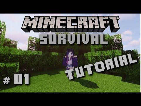 Die Erste Nacht Minecraft Survival Tutorial Für Anfän - Minecraft spielen fur anfanger
