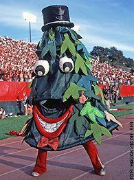 10 Strangest College Mascots Stanford Mascot Mascot Stanford Cardinal