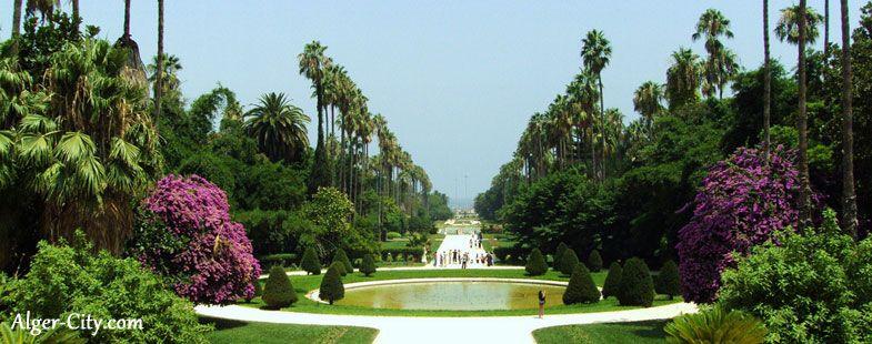 El Hamma Jardin D Essai Alger Jardins Et Alger La Blanche
