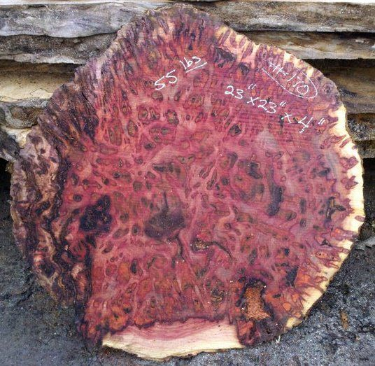 Madrone Burl In 2019 Wood Wood Slab Raw Wood