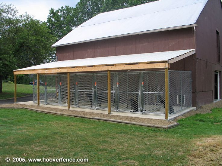 Dog kennel building plans dog kennel designs doggie for Dog kennel shed combo plans