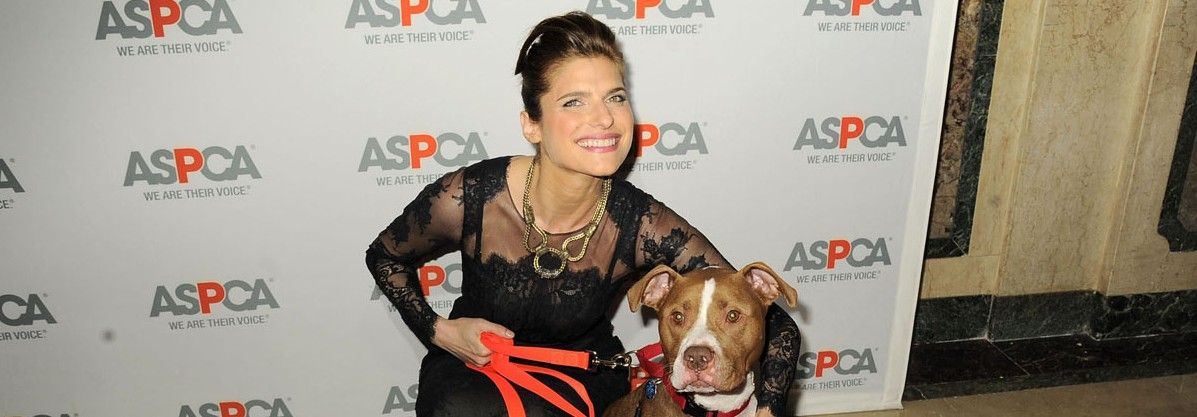 PARTY PHOTOS: ASPCA Ball Draws NYC Mayor Michael Bloomberg, Lake Bell, Carolina Herrera, Isaac Mizrahi