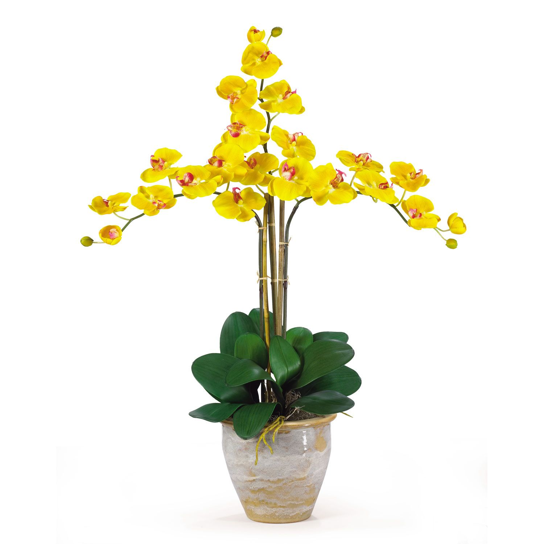Triple Stem Yellow Phalaenopsis Gold Silk Orchid Arrangement Orchid Flower Arrangements Orchid Arrangements Silk Orchids