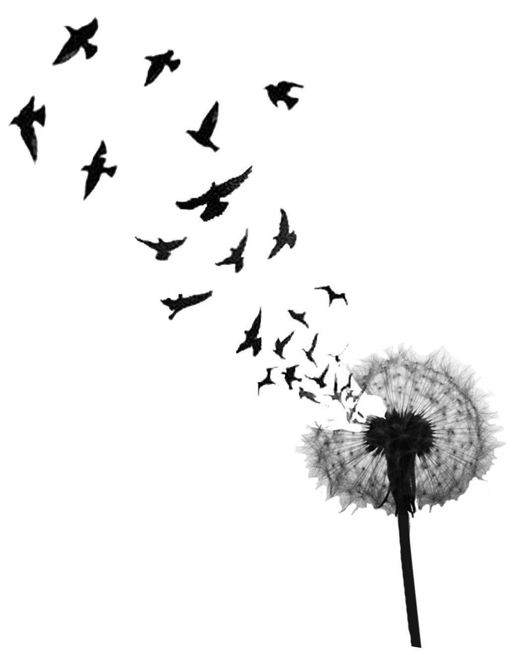 новыйl тату с птицами и их значения феникс жар птица для девушек