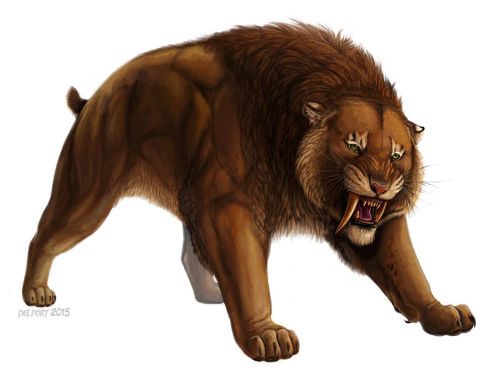 Ankur Smilodon By Viergacht Deviantart Com On Deviantart Smilodon Prehistoric Animals Tiger Art