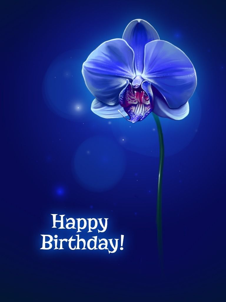 Blue Orchid Card Birthday Cards Application cards – Blue Birthday Cards