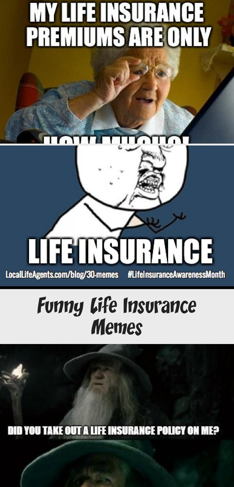 Funny Life Insurance Memes In 2020 Life Agent Life Humor Life