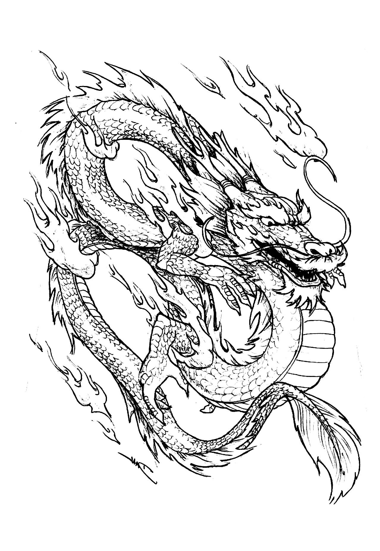 Galerie de coloriages gratuits coloriage dragon chinois - Modele dessin dragon ...