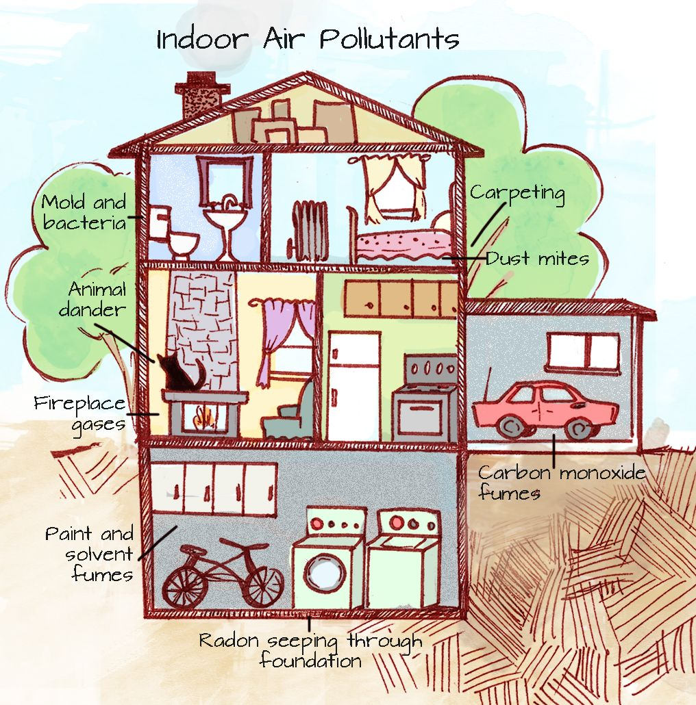 There are many ways indoor air becomes more polluted than the outdoor air. Yuck!