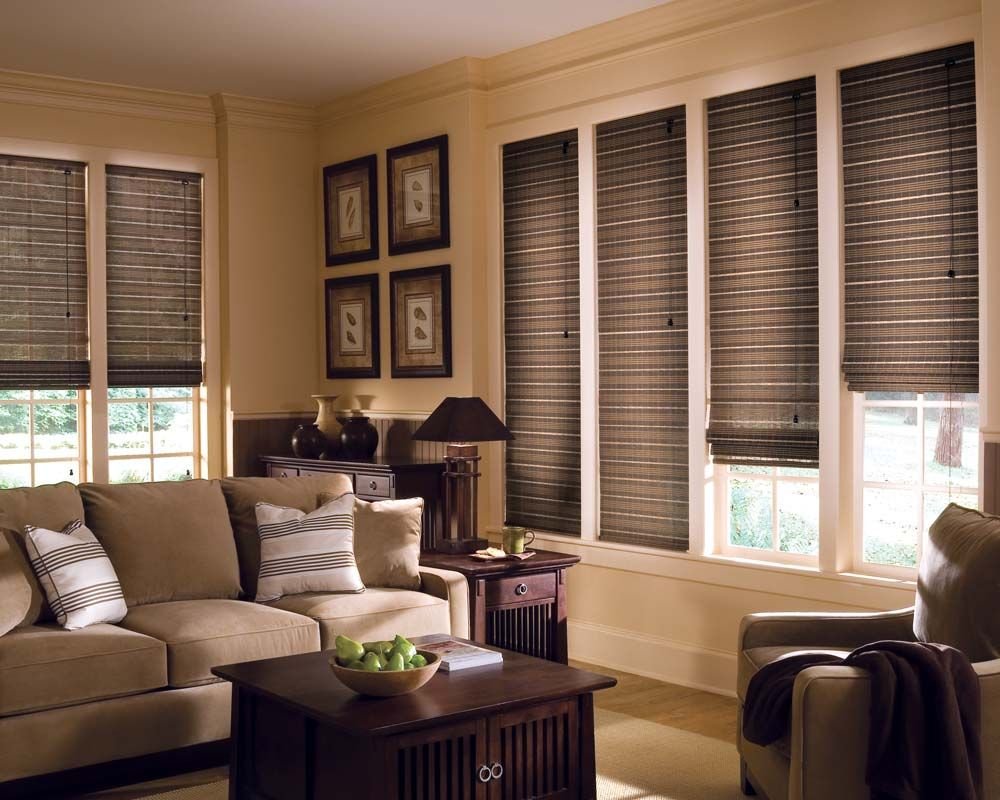 Image Result For Pictures Of Hunter Douglas Roller Shades Mesmerizing Window Treatments For Living Room And Dining Room Design Inspiration