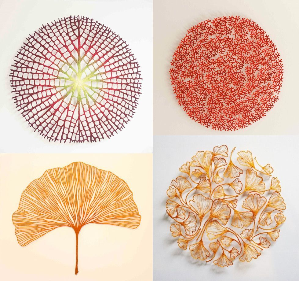 meredith woolnoughs embroideries mimic delicate forms of nature is part of Embroidery art - Meredith Woolnough's Embroideries Mimic Delicate Forms of Nature Natureart Textiles
