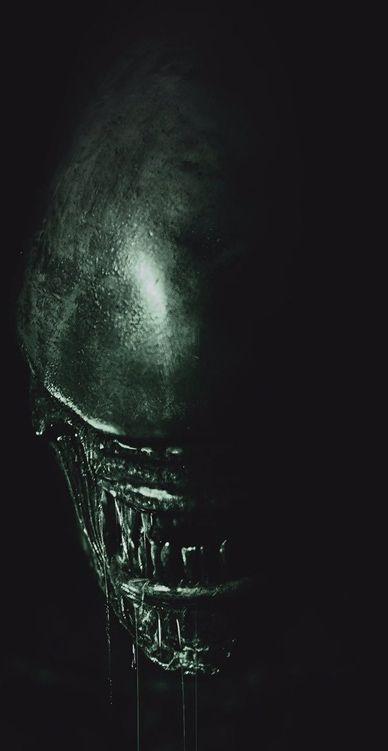 Alien Covenant Xenomorph wallpaper 1920x1080 Alien