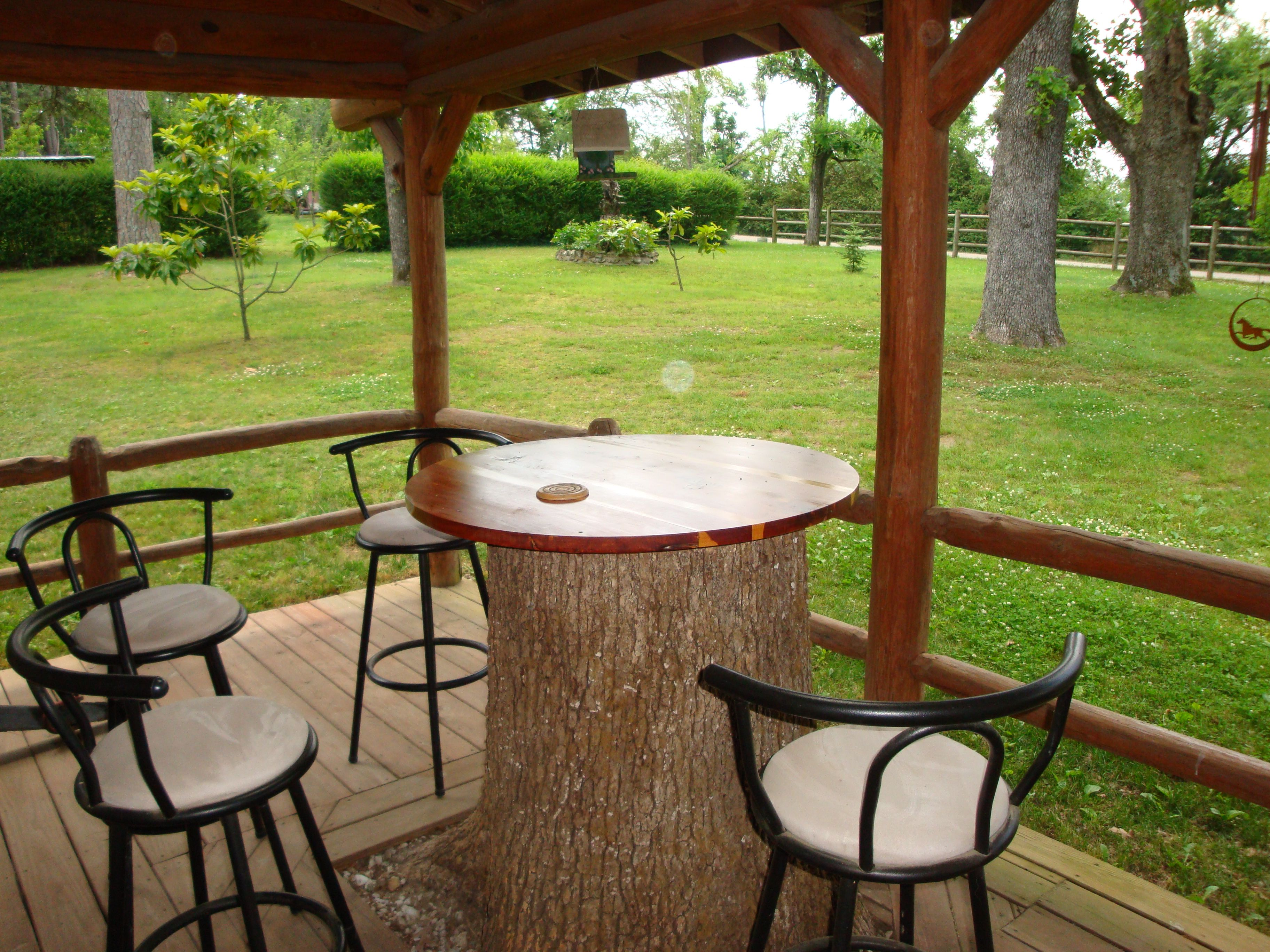 Using Wood Stumps In Outdoor Spaces Moab Somerset Velvet Paper. Tree Stump  Table