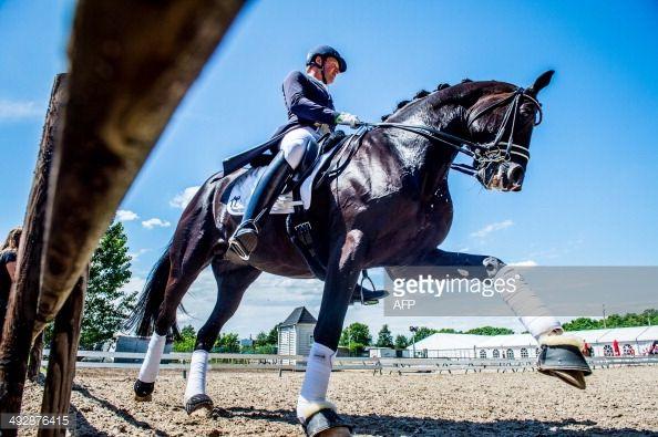 492876415-german-dressage-rider-matthias-alexander-gettyimages.jpg (594×395)