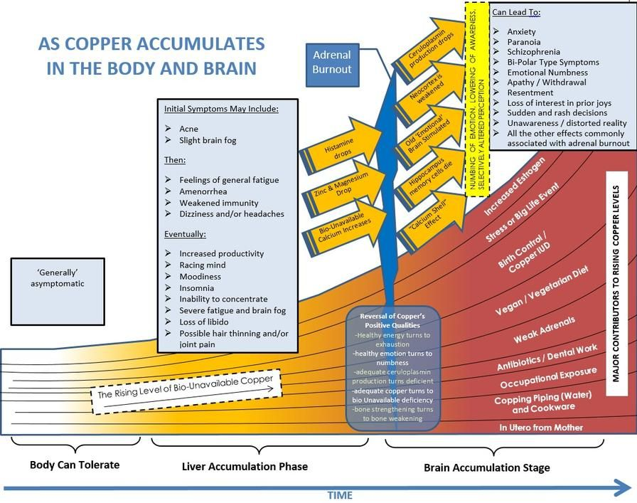 Copper Toxicity Is A Growing Epidemic Damaging Lives And