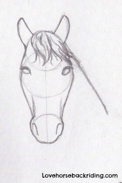 Horses drawings in pencil step by step - photo#34