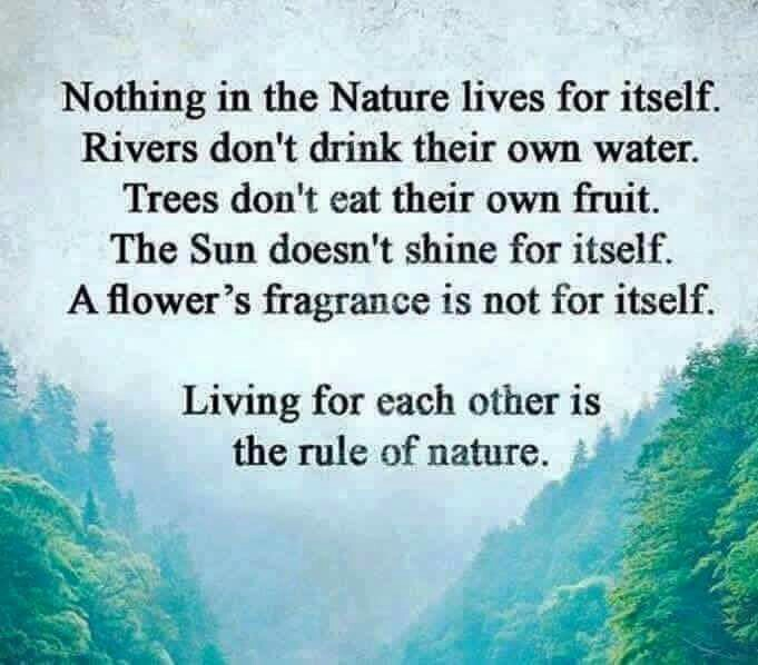 Earth gives us live respectnature